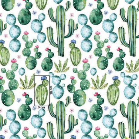 Coton OEKO TEX cactus mexicain vert et bleu fond blanc en 160cm
