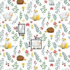 Coton OEKO TEX prairie lapin hérisson 50cm en 160cm