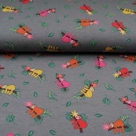 Jersey Coton Oekotex au mètre Paresseux sur fond gris en 145cm n°10600