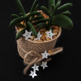 Bouton de couture fantaisie, original, en forme d'étoile nacre irisée 12mm